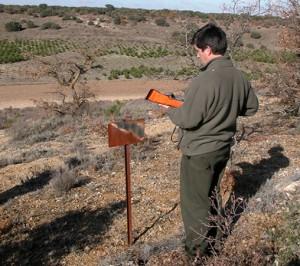 proyectos agroforestales